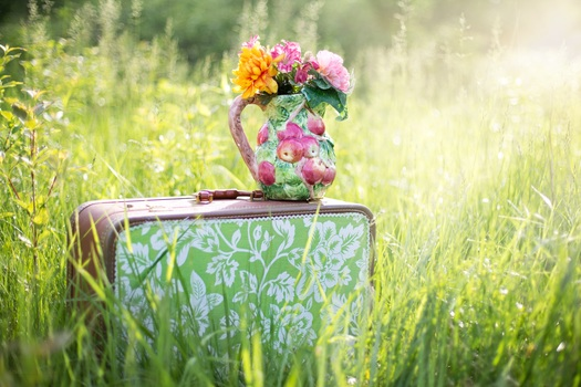 summer-still-life-suitcase-in-field-grass-summer-medium