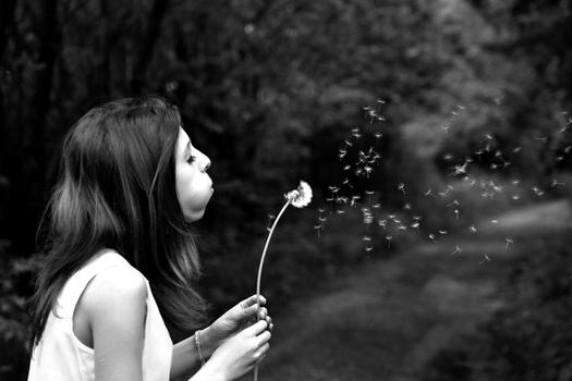 girl-dandelion-wish-summer-39485-medium